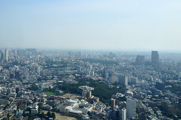 Tokyo for miles